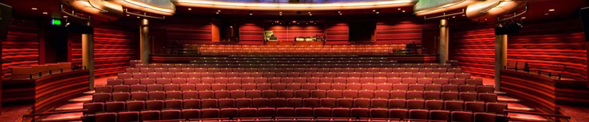 Theatre, cinema and public venue seat and carpet cleaning